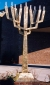 Menorah by David Klass of Synagogue Art: Young Israel of Woodmere, Woodmere, NY